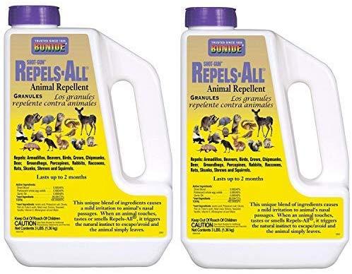 10 Best Skunk Repellents For Long Term Control